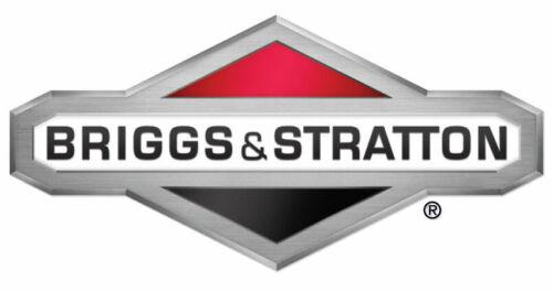 Briggs /& Stratton OEM 795440 replacement seal-valve