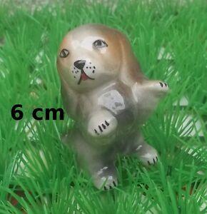 magnifique chien en céramique- collection- vitrine- dog- hond chiens G-S B1XvQjko-08031015-710749251