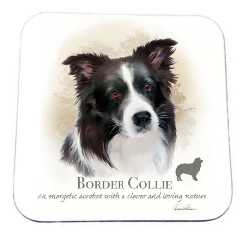 "Howard Robinson Border Collie Dog Breed Wooden Drinks Coaster 9cm x 9cm 3½/""x3½/"""