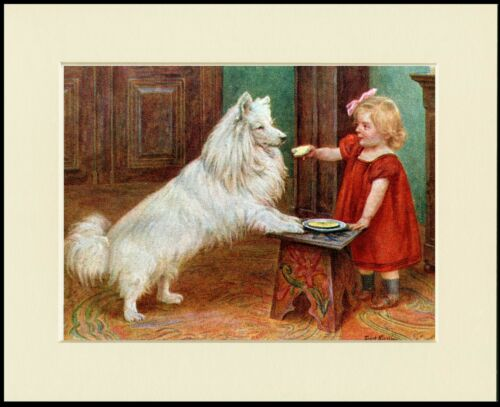 SAMOYED AND LITTLE GIRL CHARMING DOG PRINT MOUNTED READY TO FRAME