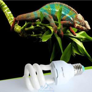 10 0 uvb 13w reptil gl hbirne uv lampe f r vivarium terrarium schildkr te birne ebay. Black Bedroom Furniture Sets. Home Design Ideas