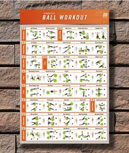 C10 Workout Stability Ball BodyBuilding Fitness Gym Chart Poster 12x18 24x36inch