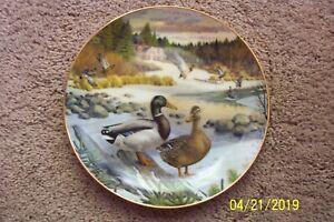 Edwin-M-Knowles-034-THE-MALLARD-034-Collector-Plate