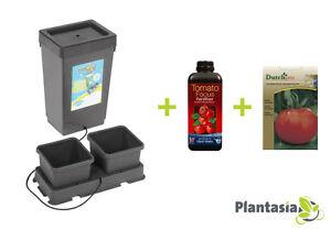 Tomato-Growing-Kit-AutoPot-Kit-1ltr-Tomato-Focus