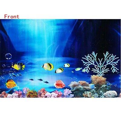 Fish Tank Background Aquarium Landscape Poster For Fish Tank Wall  Decoration Decorations Pet Supplies