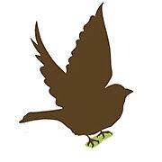 The Sparrow Clothing Company