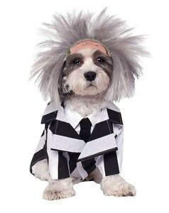 Costume Beetlejuice Pet Dog Halloween Funny Large New Outfit Rubies Wig Fancy