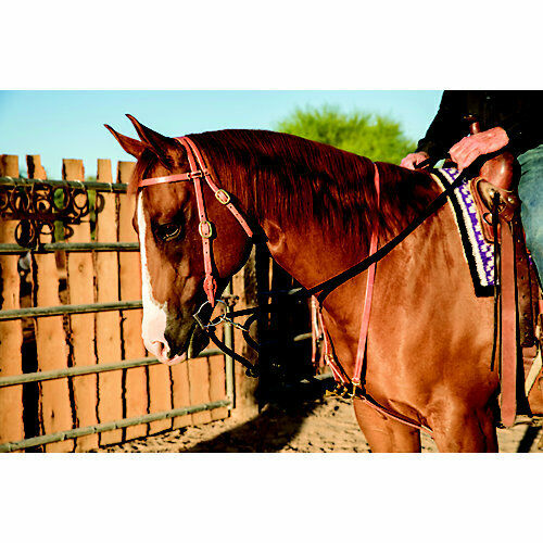Professionals Choice Al Dunning by Pro Choice Draw Rope Martingale