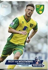 Premier Gold Soccer 13/14 Base Card #65 Ricky Van Wolfswinkel