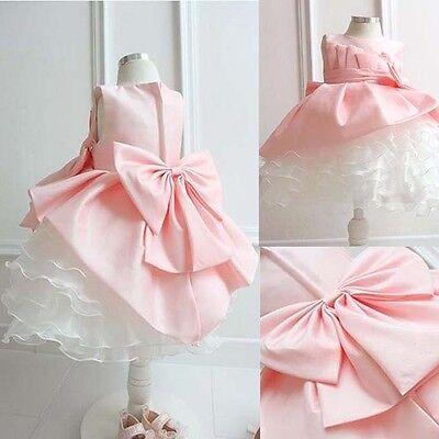Pink Wedding Bridesmaids Birthday Layered Butterfly Flower Girl Dresses