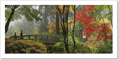 Wooden Bridge At Japanese Garden In Art Print Home Decor Wall Art