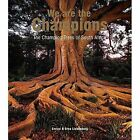We Are The Champions: The Champion Trees of South Africa by Enrico Liebenberg (Hardback, 2015)