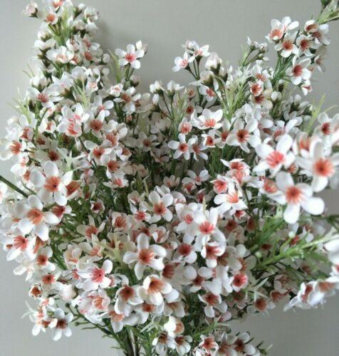 AUSTRALIAN NATIVE FLOWER CREAM WAX FLOWERS BRIDAL WEDDING ARTIFICIAL SILK FAKE