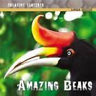 Amazing Beaks by Linda Bozzo (Hardback, 2008)