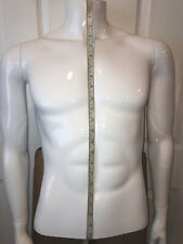 Male Torso High Quality White Plastic Mannequin With Base Retails 225
