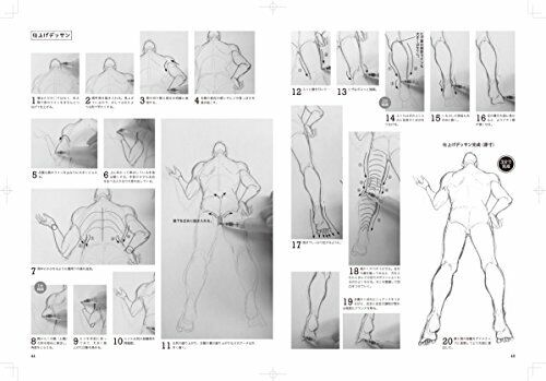 a variety of operation and angle Bold pose of how to draw the basic movement