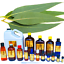 3ml-Essential-Oils-Many-Different-Oils-To-Choose-From-Buy-3-Get-1-Free thumbnail 36