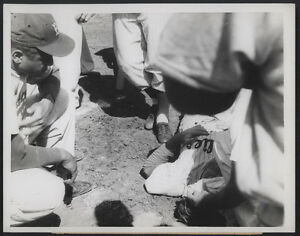 1956-Orig-DODGER-Press-Photo-Jones-Hit-By-Pitched-Ball
