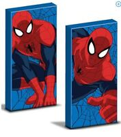 2 Marvel Spiderman Canvas Wall Art Glow In The Dark Picture Bed Bedding Room Set