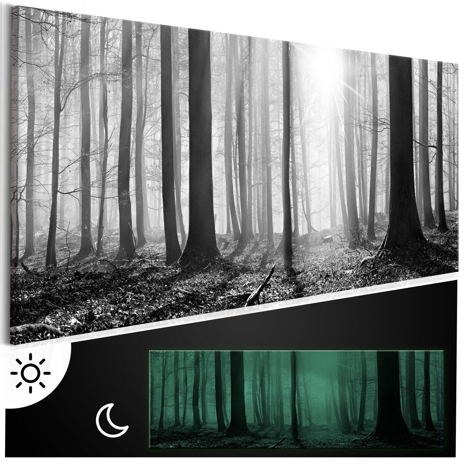 Tag & Nacht Wandbilder xxl nachtleuchtende Bilder 3D nachleuchtend c-B-0235-ag-a
