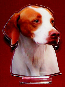 statuette-photosculptee-10x15-cm-chien-braque-saint-germain-2-dog-hund-perro