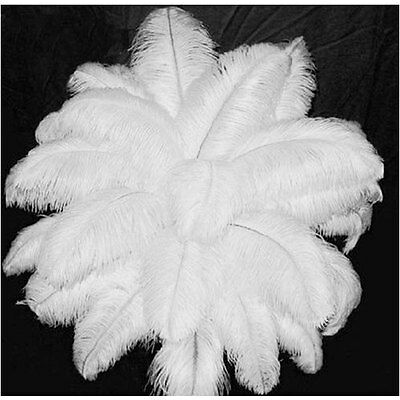 10/20/50pcs White Ostrich Feathers Wedding Party Decorations 6-21 inch/15-55cm