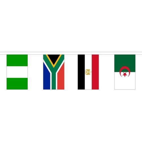 Polyester 53 African Nations Flag Bunting 16m 53 Flags National Flags