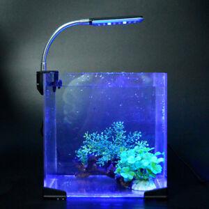 Beleuchtung Aquarium | 24 Led Beleuchtung Mondlicht Lampe Aquarium Fische Klemmleuchte Blau