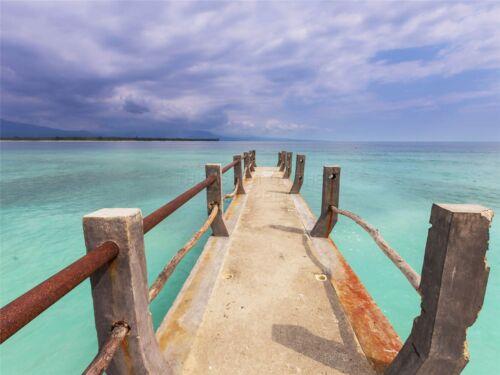 ART PRINT POSTER PHOTO SEASCAPE PIER JETTY BOARDWALK SUNSHINE OCEAN LFMP1256