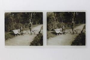 Francia Legno Foto Stereo P50L2n5 Placca Da Lente Vintage c1930