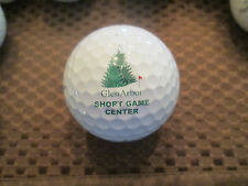 LOGO GOLF BALL-GLEN ARBOR SHORT GAME CENTER...PRACTICE BALL...PROV1 BALL.