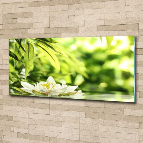 Glas-Bild Wandbilder Druck auf Glas 125x50 Deko Blumen /& Pflanzen Seerose