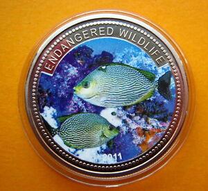 2011-Palau-Large-Color-Proof-1-Tropical-Green-Fish-Mermaid-Neptune