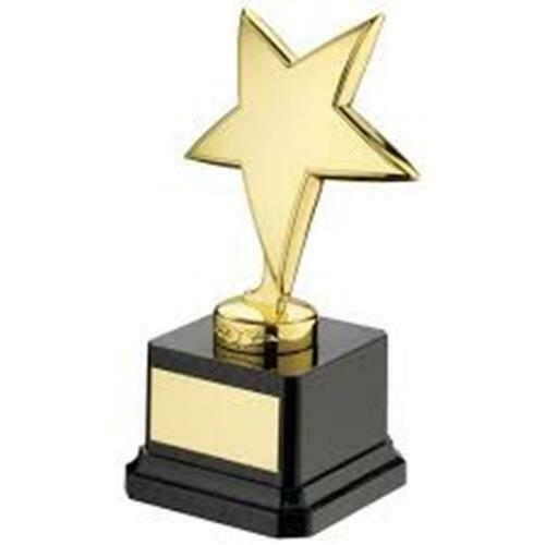 Star gold Trophy on heavy base  in 2 Sizes with FREE Engraving up to 30 Letters