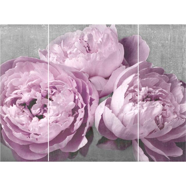 Set of 3 Triptych Grey and Pink Peonies Canvas Wall Art Scene Home Decor