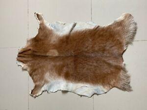 Animal Fur Hide Rug Cute Accent