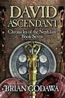 David Ascendant by Brian Godawa (Paperback / softback, 2014)