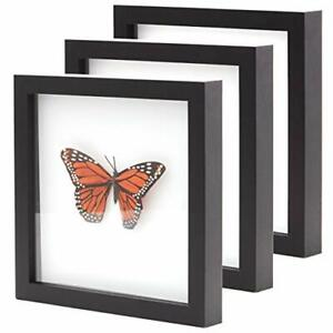 """[8x8 12x12] Shadow Box Display Case 1"""" Depth Wood Picture Frame by Eucatus"""