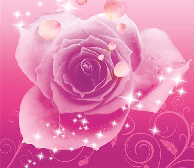 3D Eine rote Rose 3576 Fototapeten Wandbild Fototapete BildTapete Familie DE