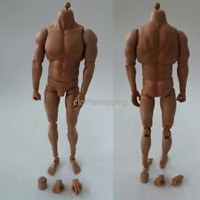 """1/6 Scale Strong Muscular Male Action Figure Body For 12"""" HT Man Headsculpt"""