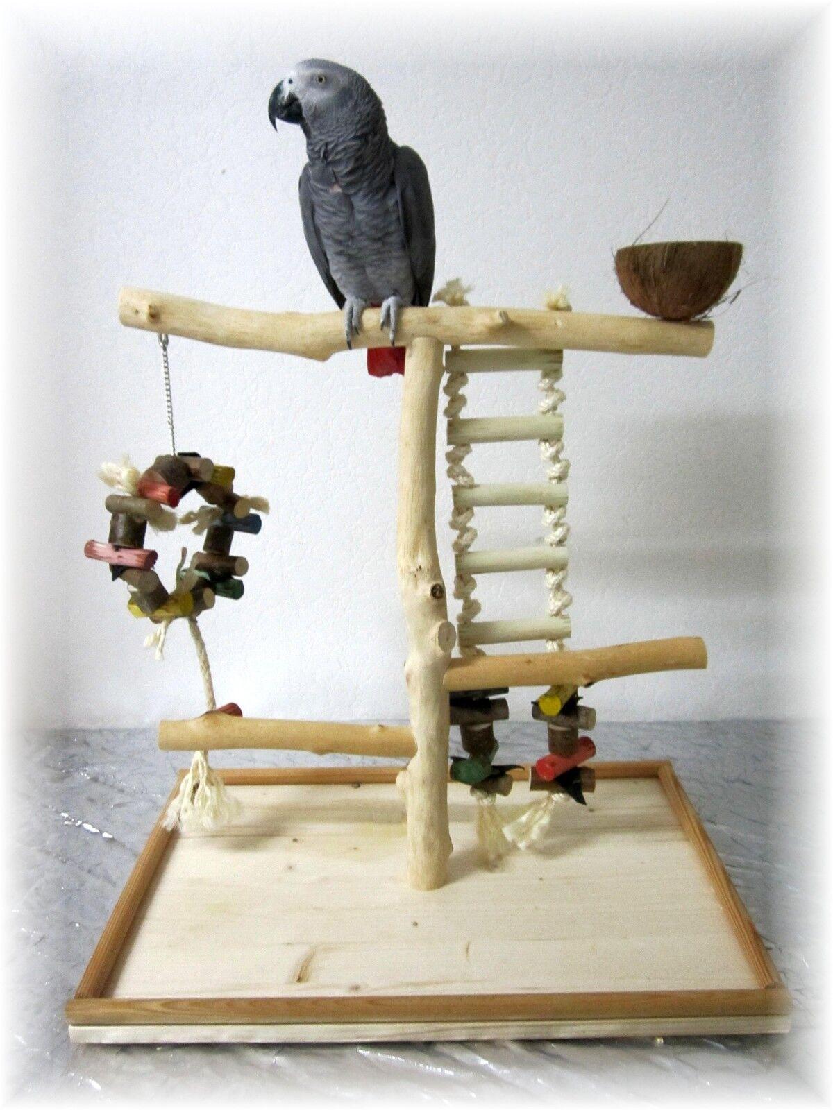 Papageienspielzeug Tischfreisitz aus geschältem Buchenholz Buchenholz Buchenholz MIT SPIELZEUG 8e5bcf