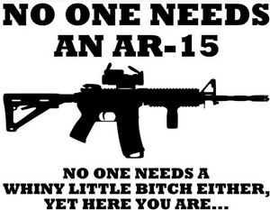 Image result for guns 2a