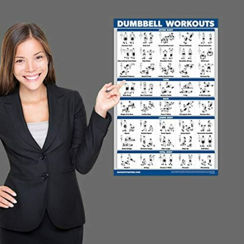 Dumbbell Workout Exercise Poster Laminated Home Gym Weight Body Building Guide