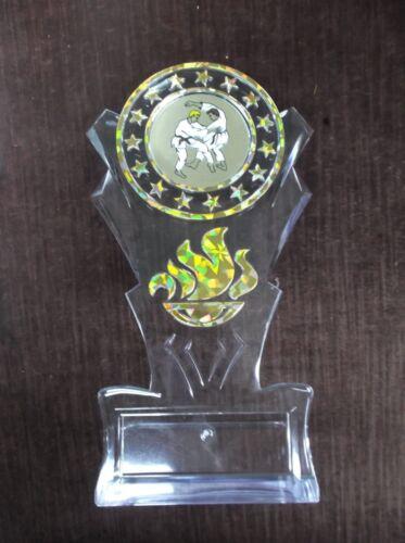 gold karate insert trophy award tall flame acrylic