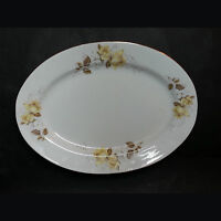 Serving Oval Platter Tray 12 Inches By 8.5 Inches Porcelain Made In China