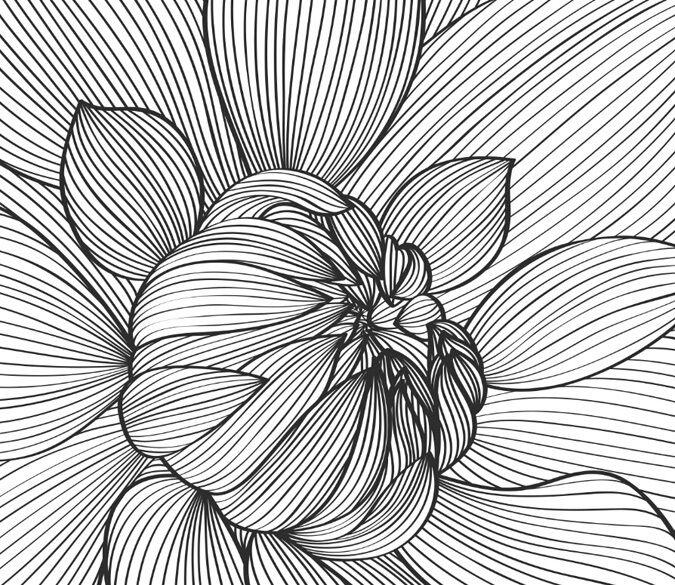 3D Flower lines art 3555 Paper Wall Print Decal Wall Wall Mural AJ WALLPAPER GB