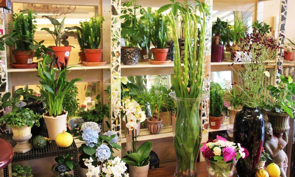 Blomster butik i det bedste kvartere af københa...