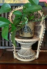 Mini Wicker Rattan Peacock Chair Doll Bear Display plant vintage Jungalow Style