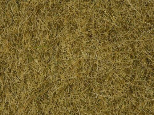 NOCH 07101 Wildgras 50 g Beutel 6 mm beige