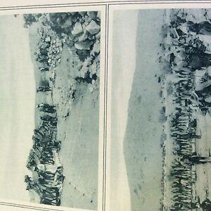 m1c-ephemera-ww1-original-1916-picture-egypt-allies-water-camels